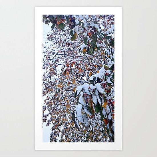 Snow on Fall Leaves 2 Art Print