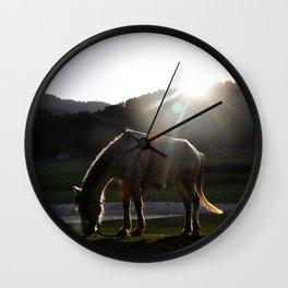 mini switzerland in india Wall Clock
