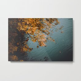 Autumn Copper + Teal Metal Print