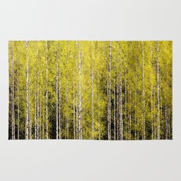 Lovely spring atmosphere - vibrant green leaves on the trees - beautiful birch grove Rug
