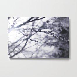 Frost Bitten Tree Metal Print