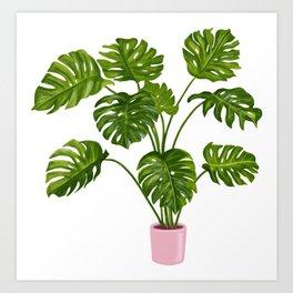 Monstera House Plant Art Print