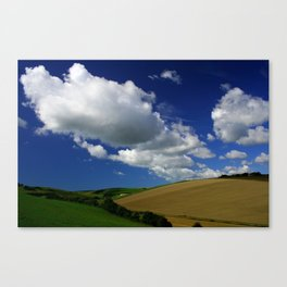 The Rolling Downs Canvas Print