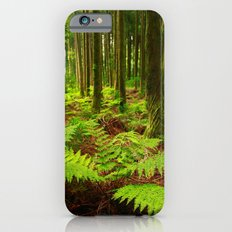 Ferns in the forest Slim Case iPhone 6s