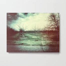 A Year Today Metal Print