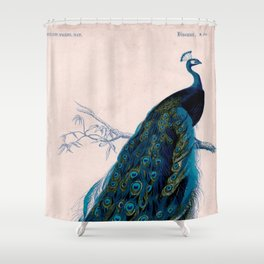 Vintage peacock bird print colorful feathers 1800s antique art nouveau deco nature book plate Shower Curtain