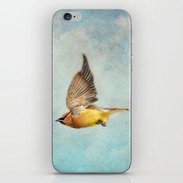 Winter Flight iPhone Skin