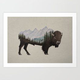 The Land of the Bison Art Print