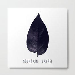 MOUNTAIN LAUREL Metal Print