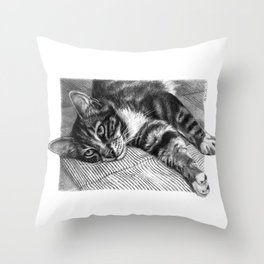 Resting Kitty G064 Throw Pillow