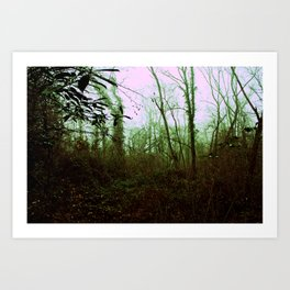Into the woods. Art Print