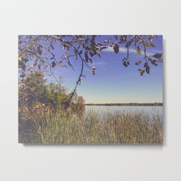 Early Autumn Lakeview Metal Print
