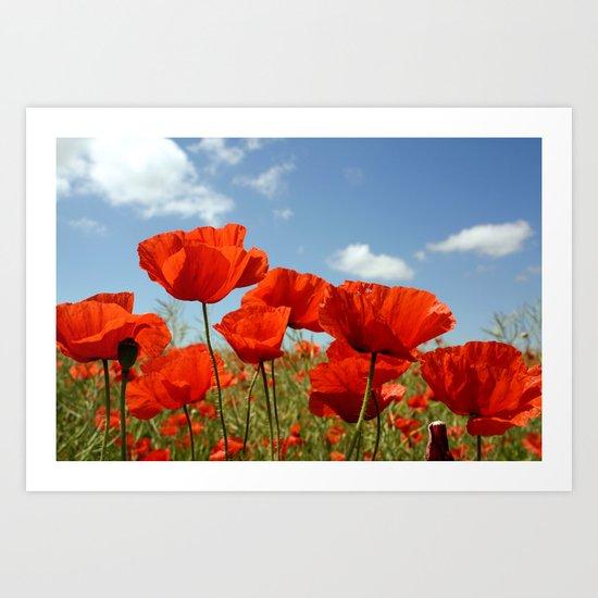 Fields of Poppy Happiness Art Print