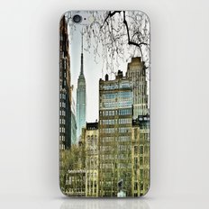 The view from Bryant Park iPhone Skin