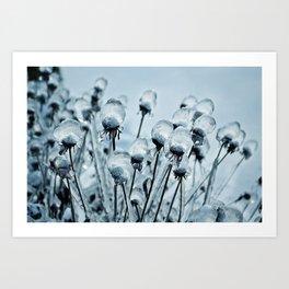 Ice Bubbles by Althéa Photo Art Print