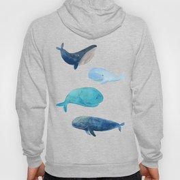 Cool whales Hoody