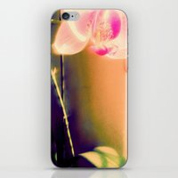 orchid iPhone & iPod Skins featuring orchid by Eva Lesko