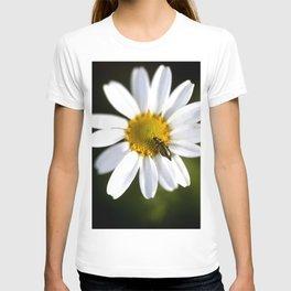 Green bug in daisy T-shirt