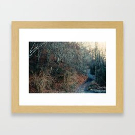 Blue Path Framed Art Print