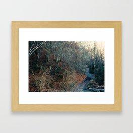 Blue Path Framed Art Print