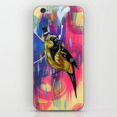 This is the dapper oriole you've been looking for iPhone & iPod Skin
