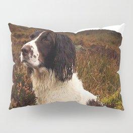 Stanley Pillow Sham