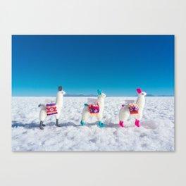 Llamas on the Bolivia Salt Flats Canvas Print