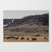 elk Canvas Prints featuring Elk by Al Robinson