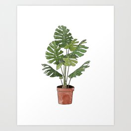 Philodendron Selloum Art Print
