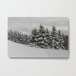 Fresh Powder Metal Print
