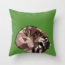 Sleeping raccoon Throw Pillow