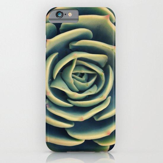 Echeveria x Imbricata Succulent iPhone & iPod Case