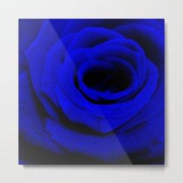 Expansion Blue rose flower Metal Print