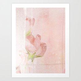 pink magnolia Art Print