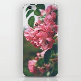 Flower XVIII iPhone Skin