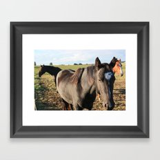 Cowboica Framed Art Print