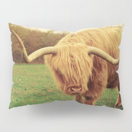 Scottish Highland Steer - regular version Pillow Sham