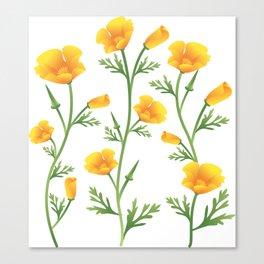 California Gold Rush (Poppies) Canvas Print