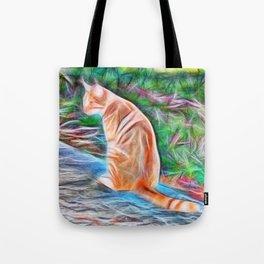 Orange cat sitting on a path in rural Queensland, Australia Tote Bag