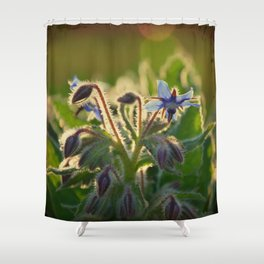 The Beauty of Weeds Shower Curtain