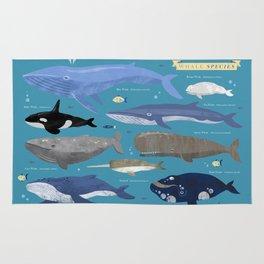 Whale Species Rug