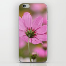 PHOTOGRAPHY / FLOWER 02 iPhone Skin