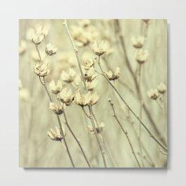winter flora Metal Print