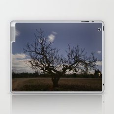 Ficus Carica Laptop & iPad Skin