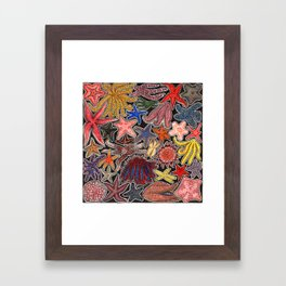 Sea stars and starfish Framed Art Print