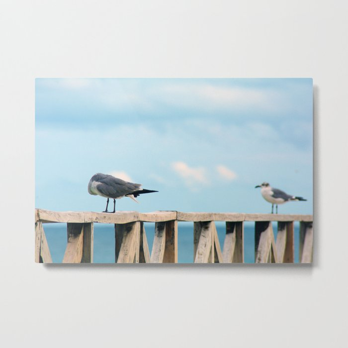 Bird collection _02 Metal Print