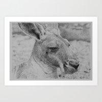 kangaroo Art Prints featuring Kangaroo by Beau skarp