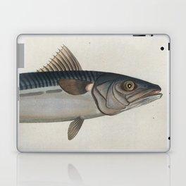 Vintage Illustration of an Atlantic Mackerel (1785) Laptop & iPad Skin