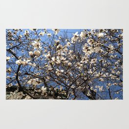Spring and the City Rug