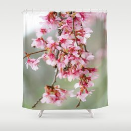Cherry Blossom-7 Shower Curtain